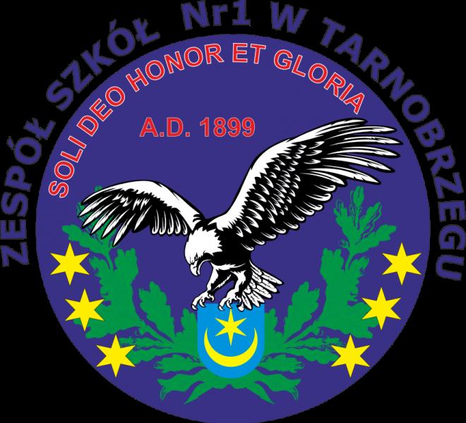 ZS nr1 Logo 11